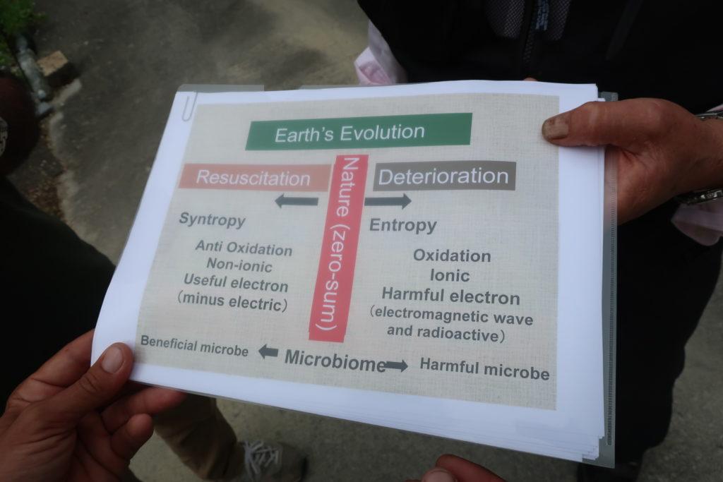 schéma du rôle des EM dans l'évolution de la terre