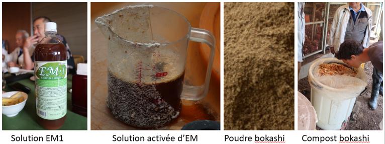 solution EM, EMAS, poudre et compost bokashi