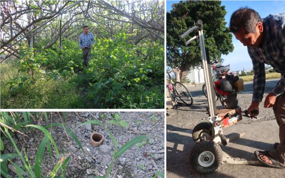 verger bio Taïwan : percer un trou dans le sol pour fertiliser