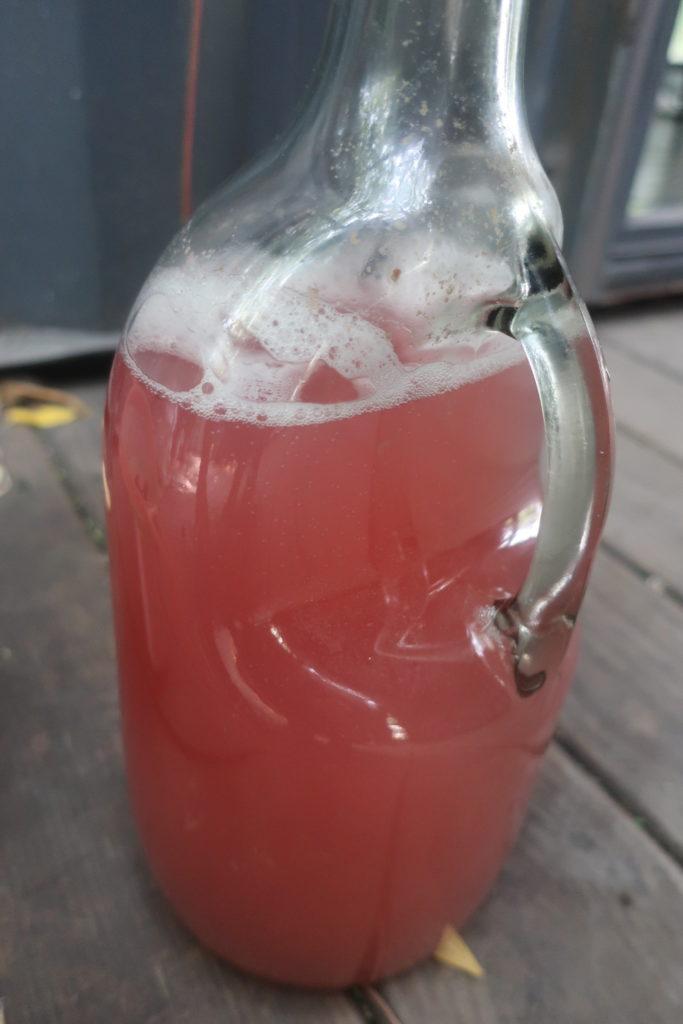 deuxième phase de la boisson pétillante fermentée de jaboticaba