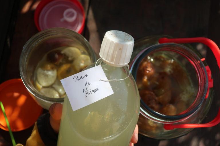 boisson pétillante fermentée peaux de kiwi