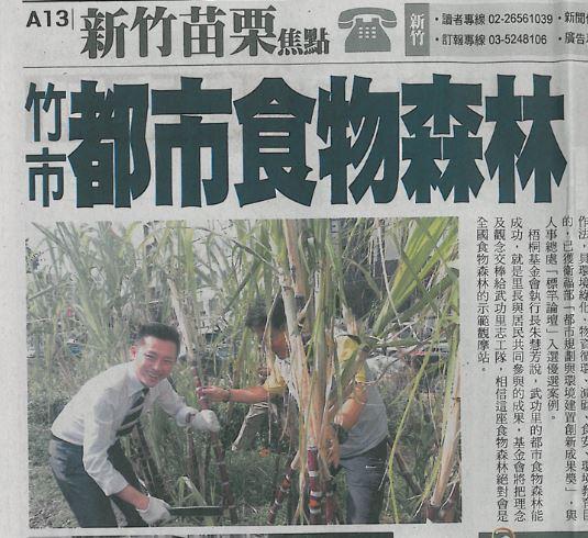 Le maire de Hsinchu récolte de la canne à sucre.