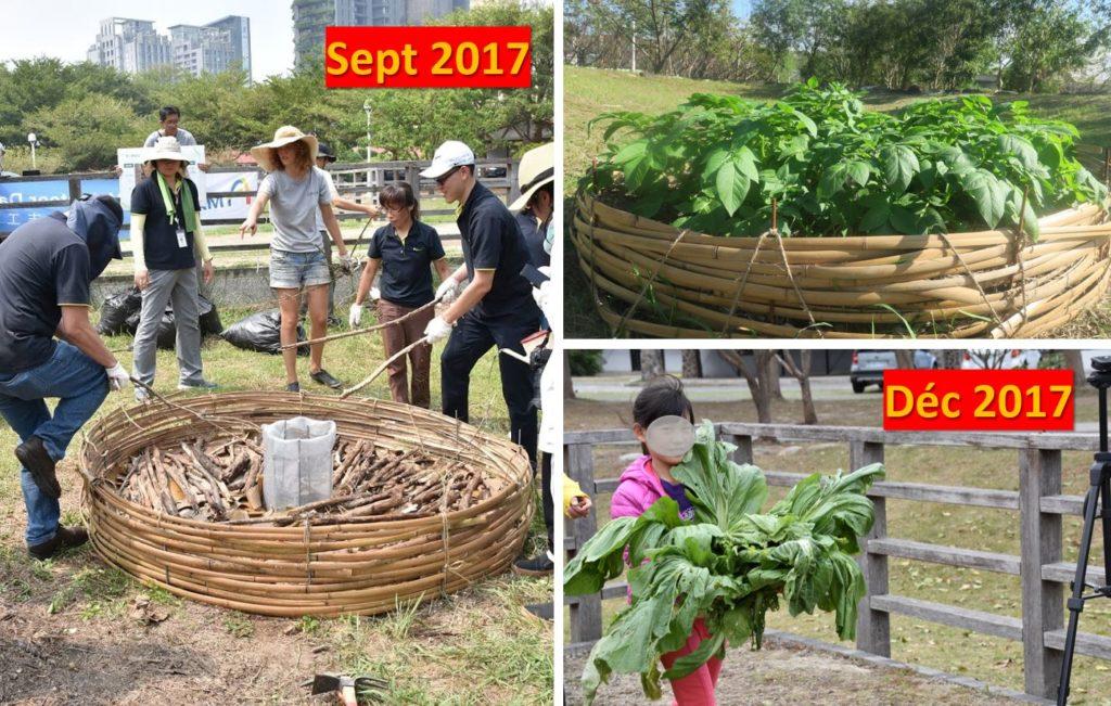 sol nourricier à Zhubei Food Forest